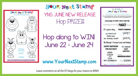 YNS June 2013 Prize Graphic